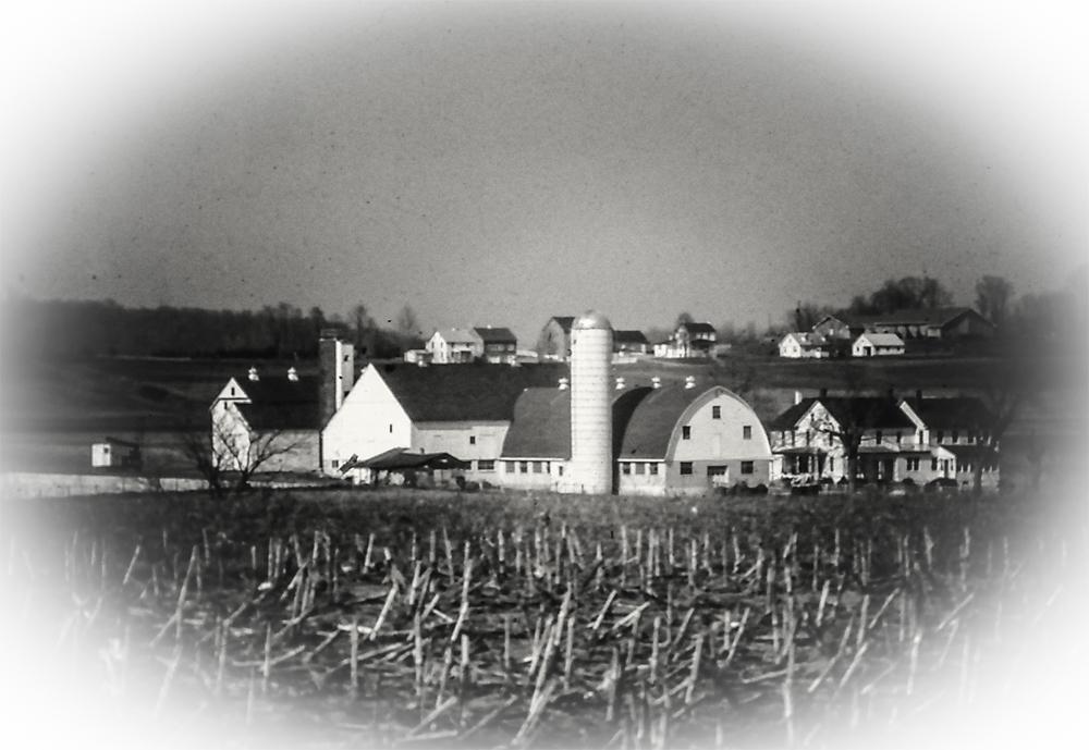 photoblog image Amish Farm
