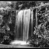 Water feature in B&W