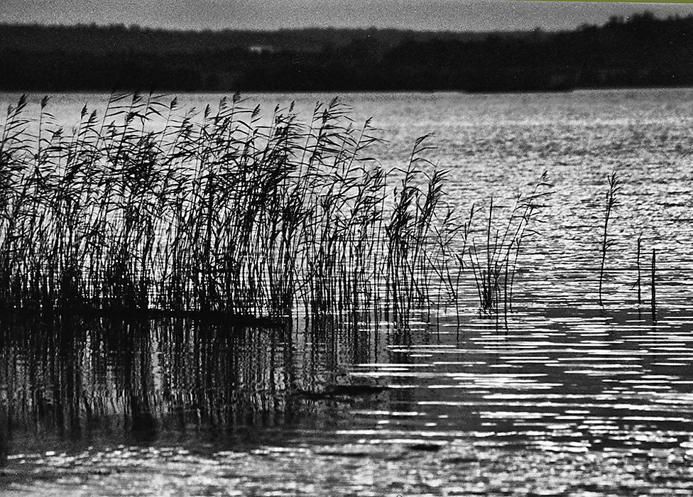 photoblog image Lake Scene