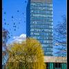Campus architecture - 7