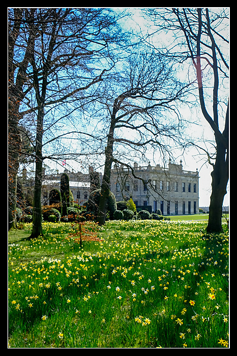 photoblog image Brodsworth Hall - House and daffodils - 2