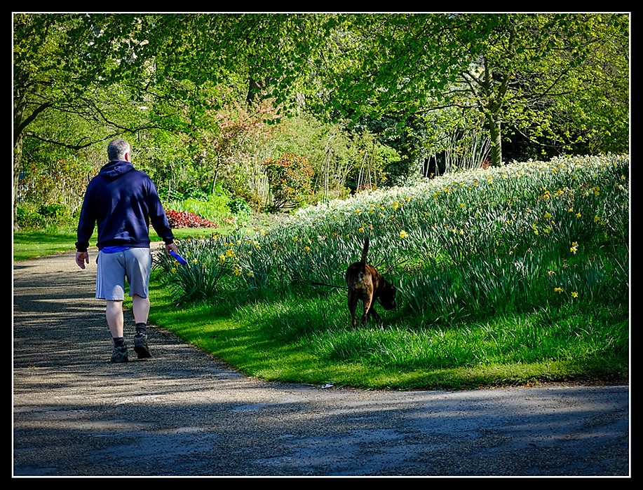 photoblog image Walking the dog