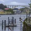 Porto-Arrabida bridge