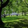 Summer in the gardens
