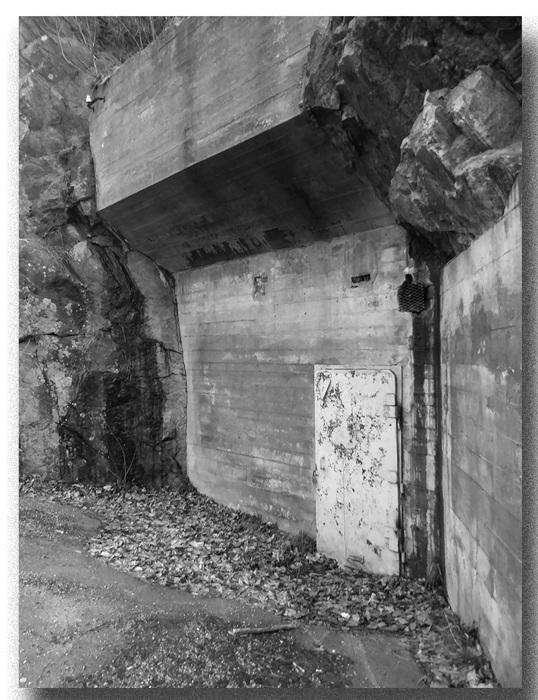 photoblog image Bunker?