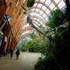 Sheffield-Winter Gardens