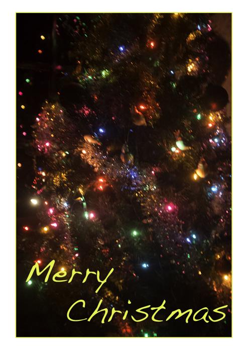 photoblog image Merry Christmas
