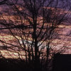Winter sunrise, Sheffield