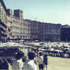 Siena-the Campo