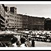 Siena-the Campo - B&W