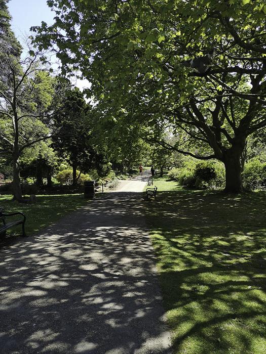 photoblog image Botanical Gardens - main path from entrance Eastwards