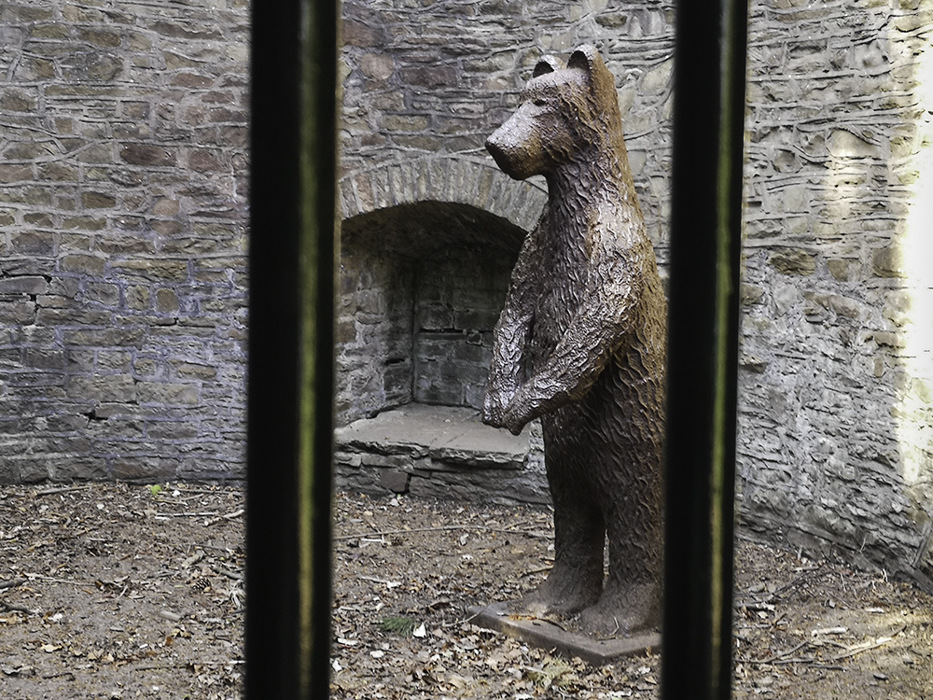 photoblog image Beware of the bear!