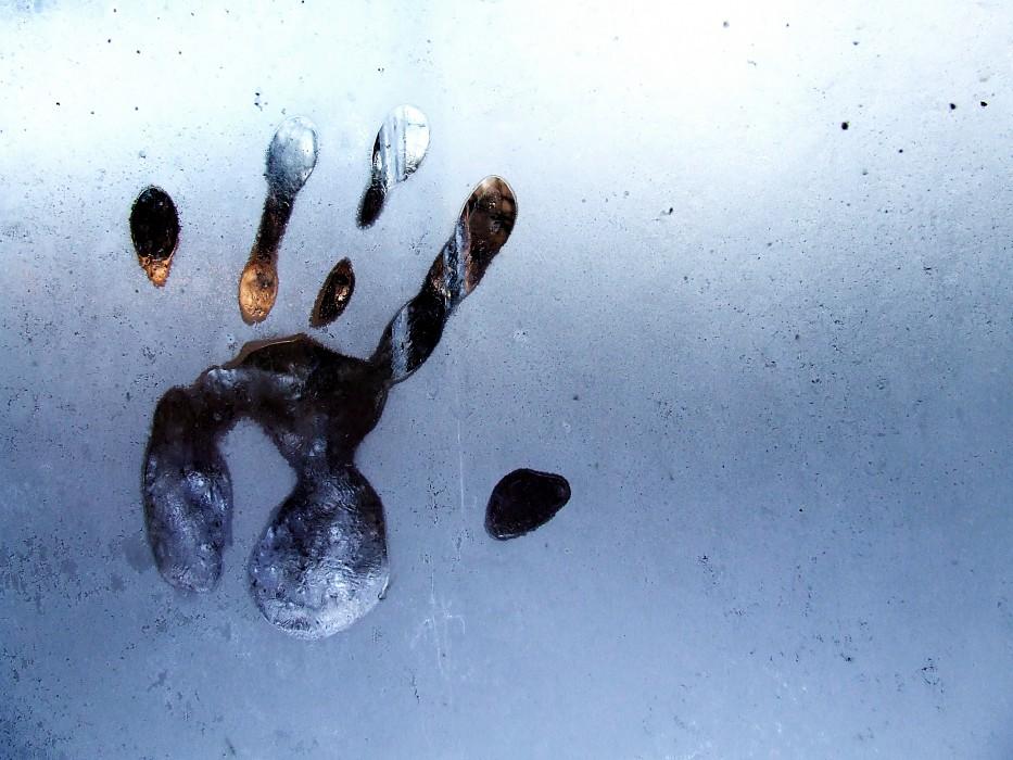 photoblog image frost hand