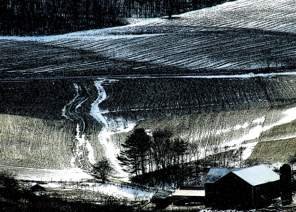photoblog image corn stubble landscape