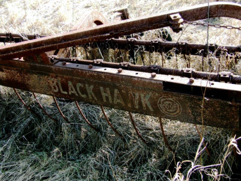 photoblog image Black Hawk Co-op