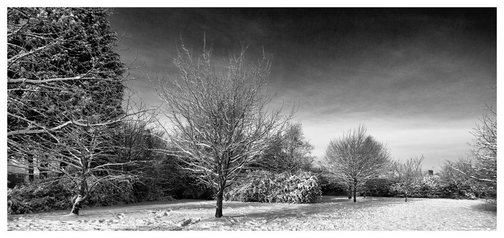 photoblog image Droitwich Snow
