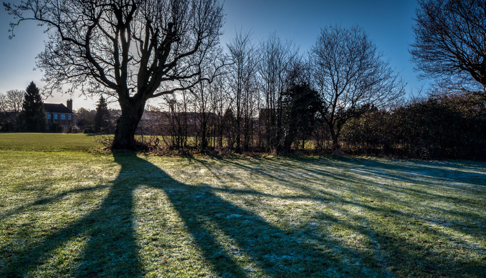photoblog image Around and about in Droitwich 4