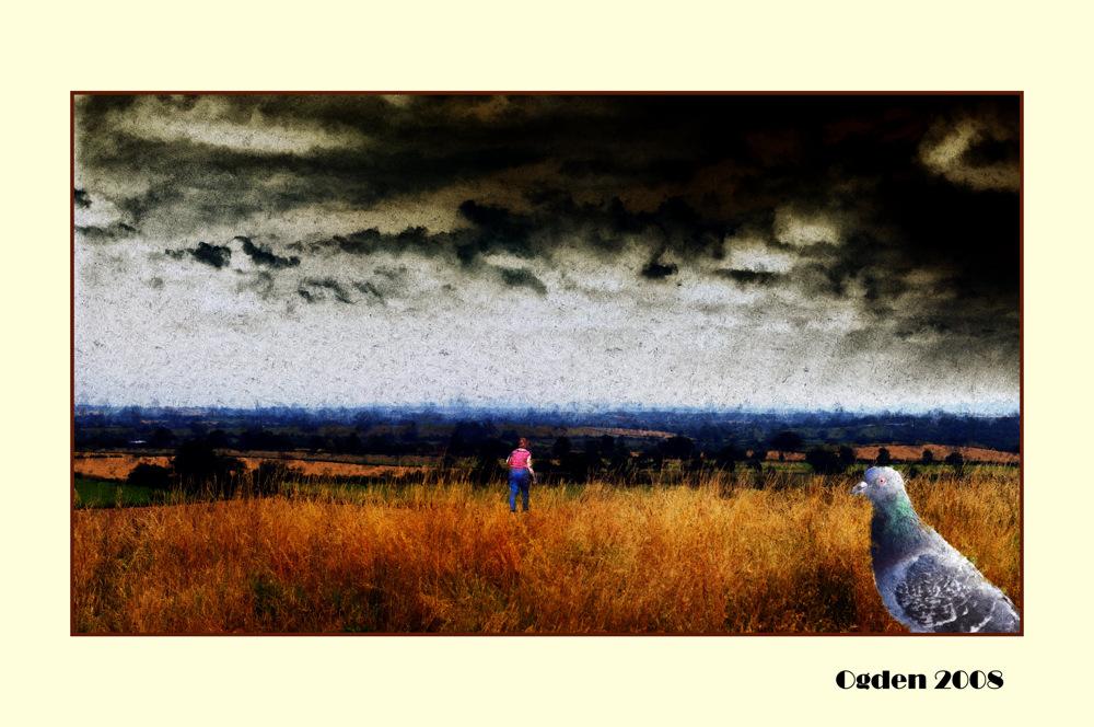 photoblog image Ogden Retrospective
