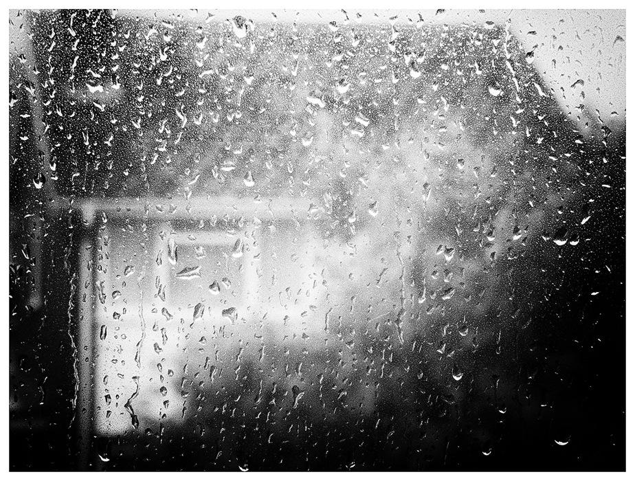 photoblog image Rain