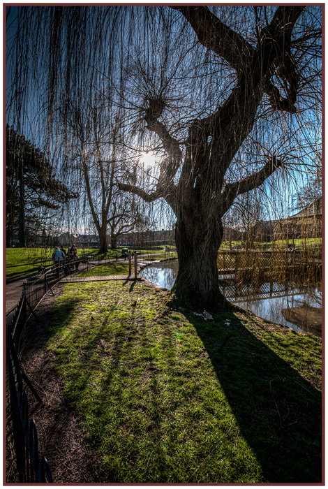 photoblog image Gheluvelt Park in February 2of 5