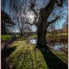 Gheluvelt Park in February 2of 5