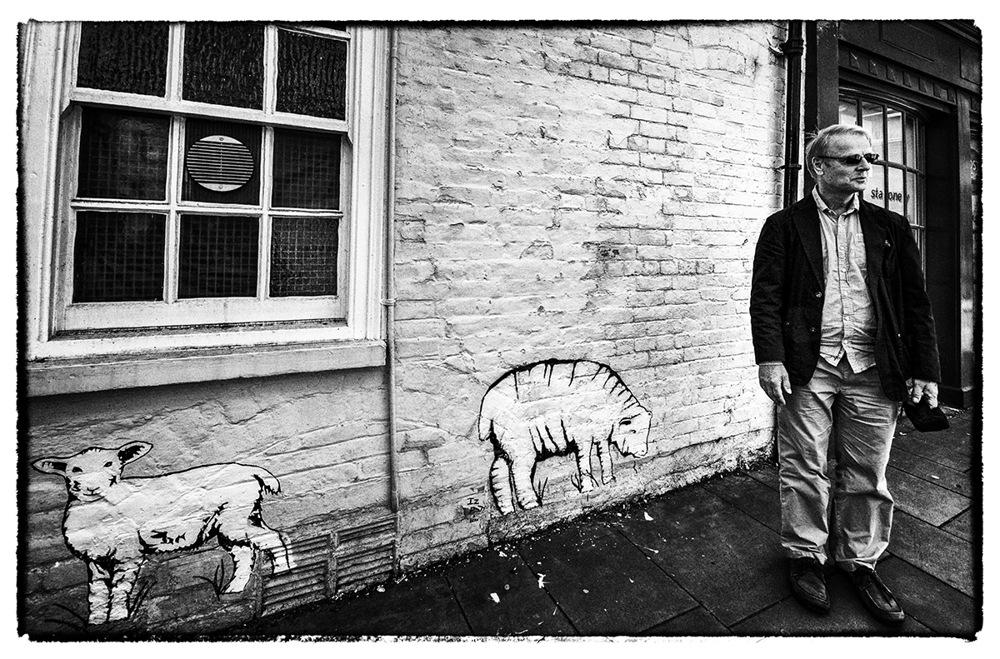 photoblog image Sheep Saturday.