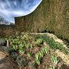 Hidcote Gardens