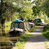 The Droitwich canal at Tibberton 4