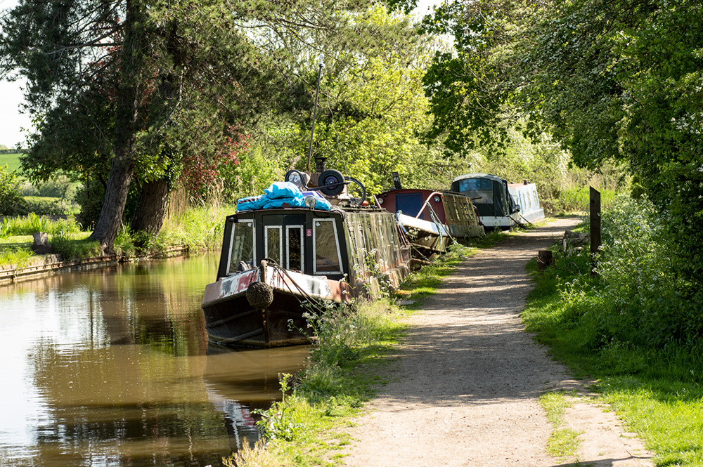 photoblog image The Droitwich canal at Tibberton 4