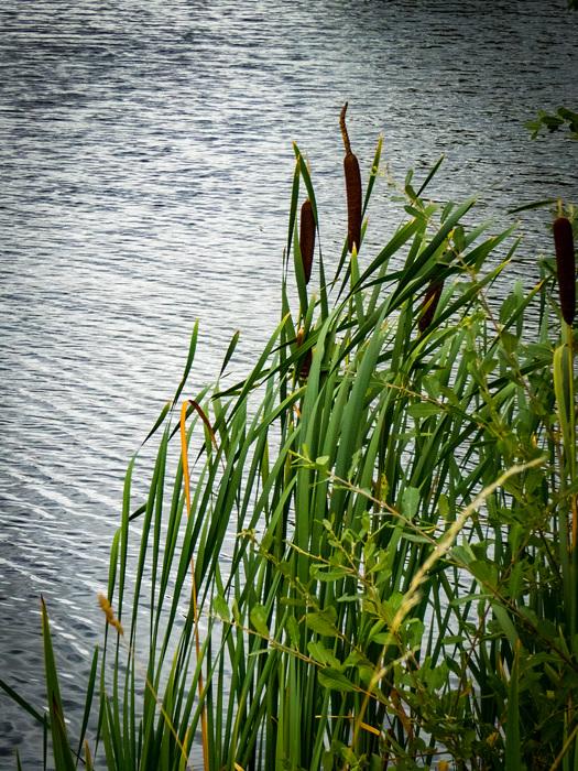 photoblog image Lenches Lakes 4 of 6