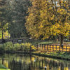 Droitwich Autumn 3