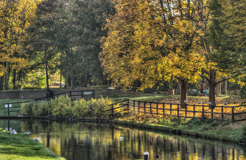 photoblog image Droitwich Autumn 3