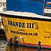 Shande III