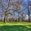 Gheluvelt Park in March sunshine 2