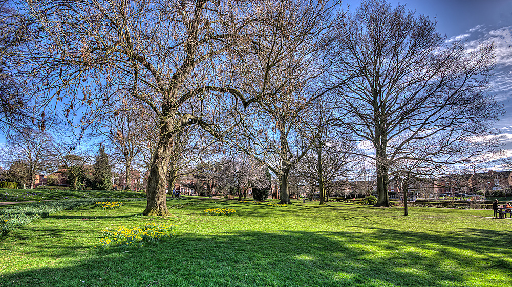 photoblog image Gheluvelt Park in March sunshine 2