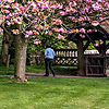 Strolling through the churchyard