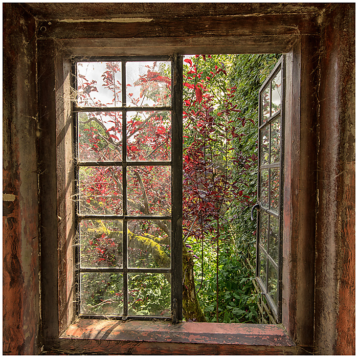 photoblog image Hidcote Manor Gardens 13