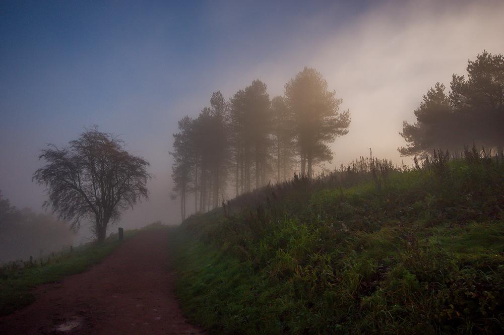 photoblog image The Clent Hills revisited 4