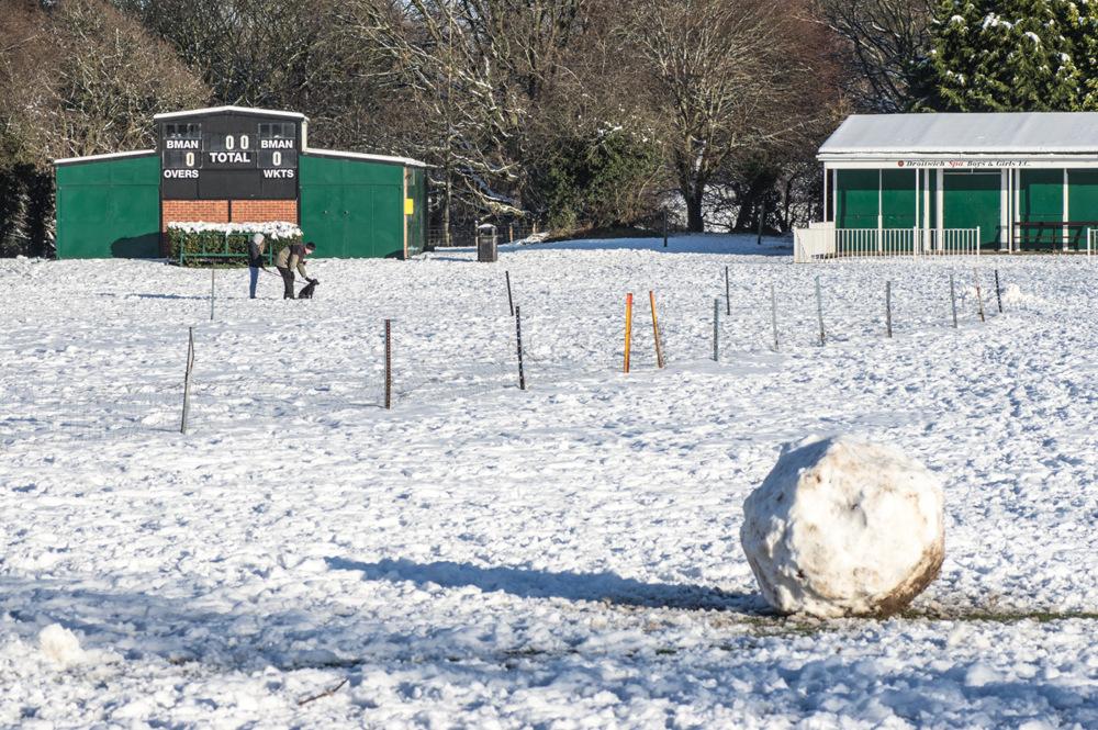 photoblog image White Ball Cricket?