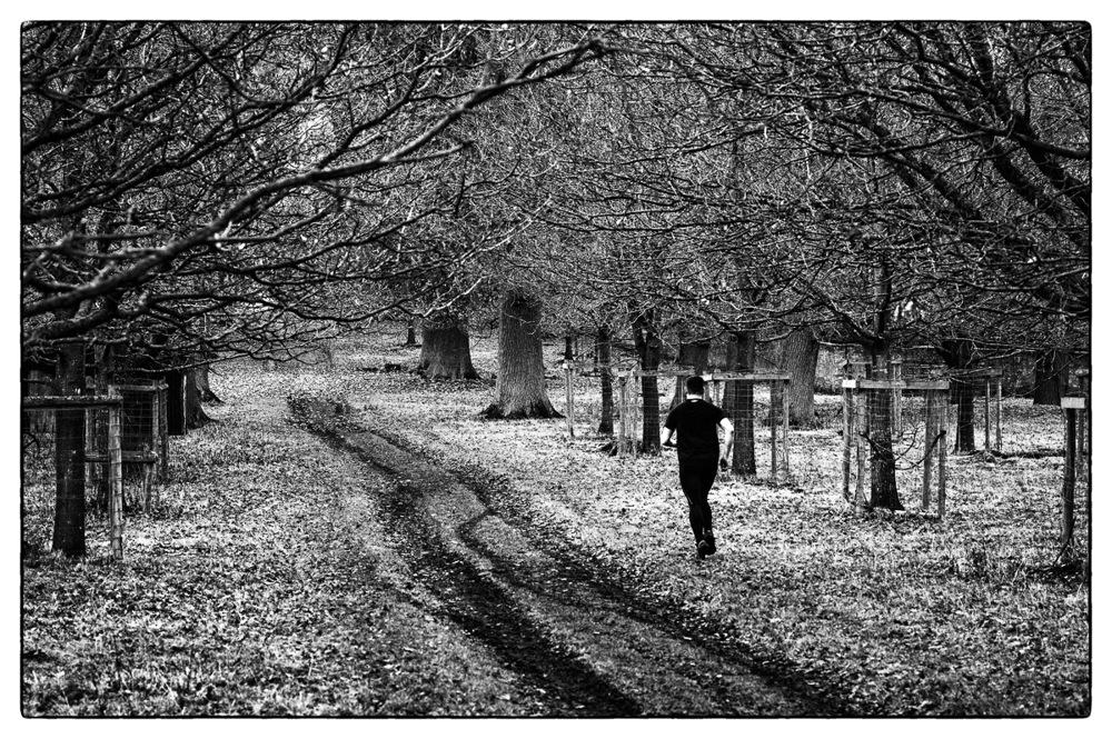photoblog image Keep on running