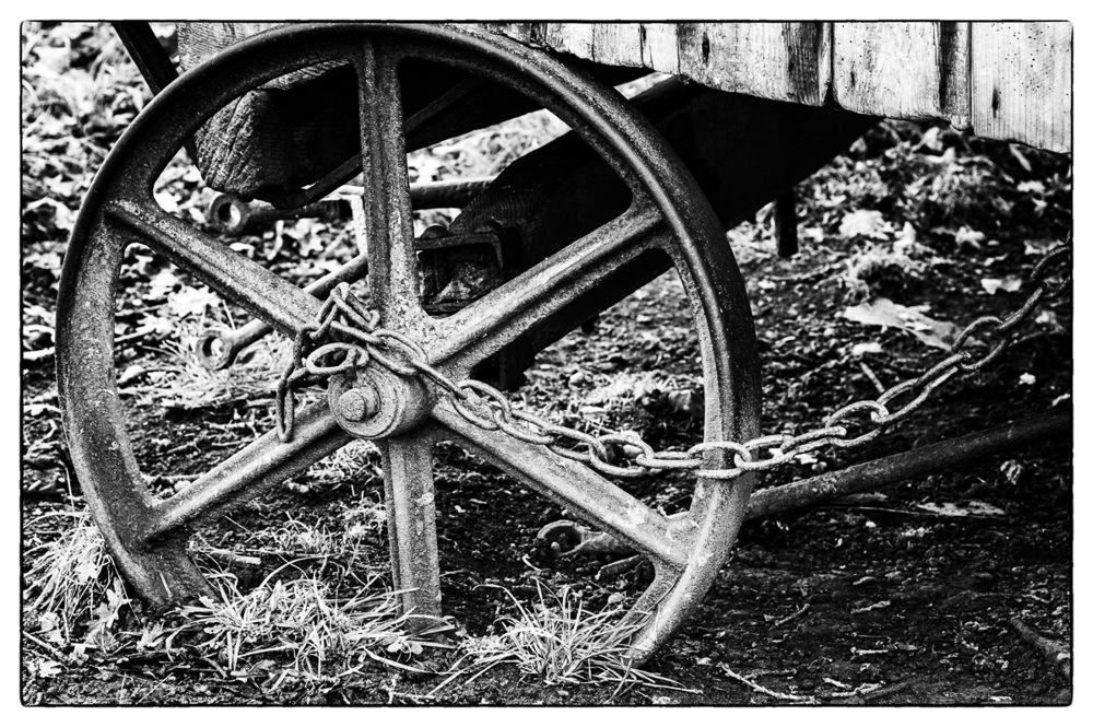 photoblog image Wheelie