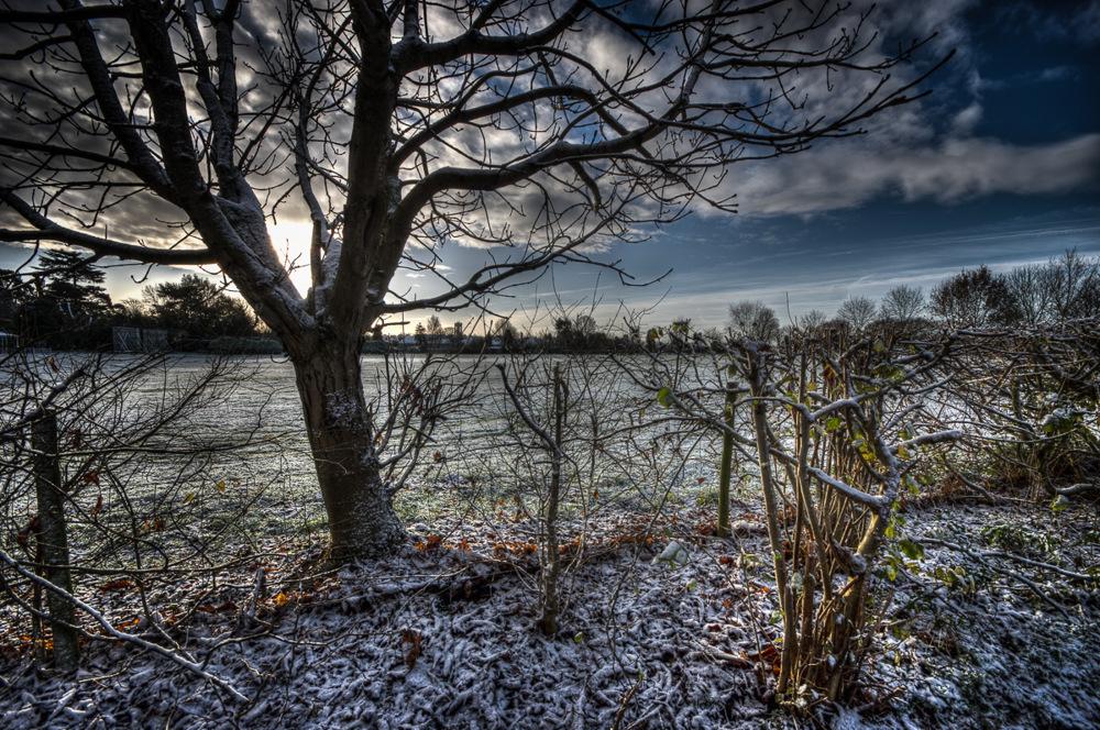 photoblog image Winter Wonderland