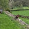 Chedworth Roman Villa 7 of several