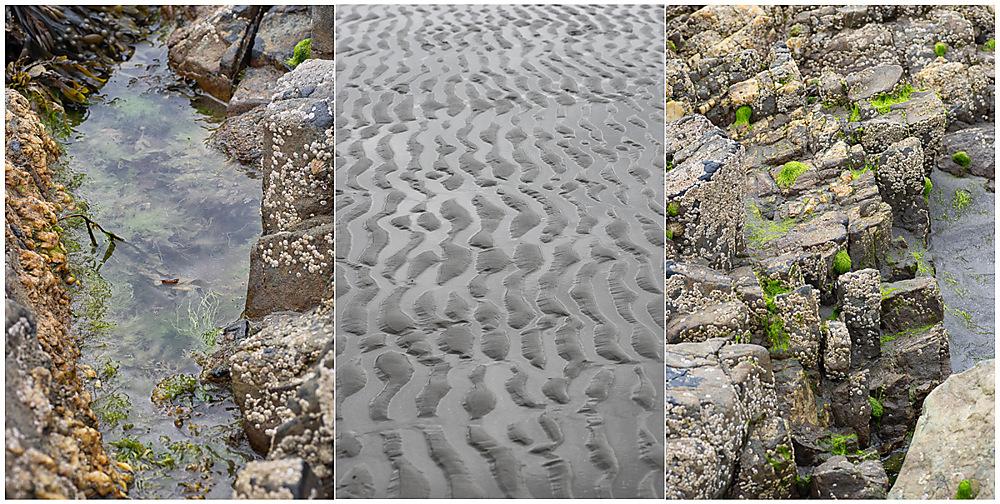 photoblog image seaside stuff 2
