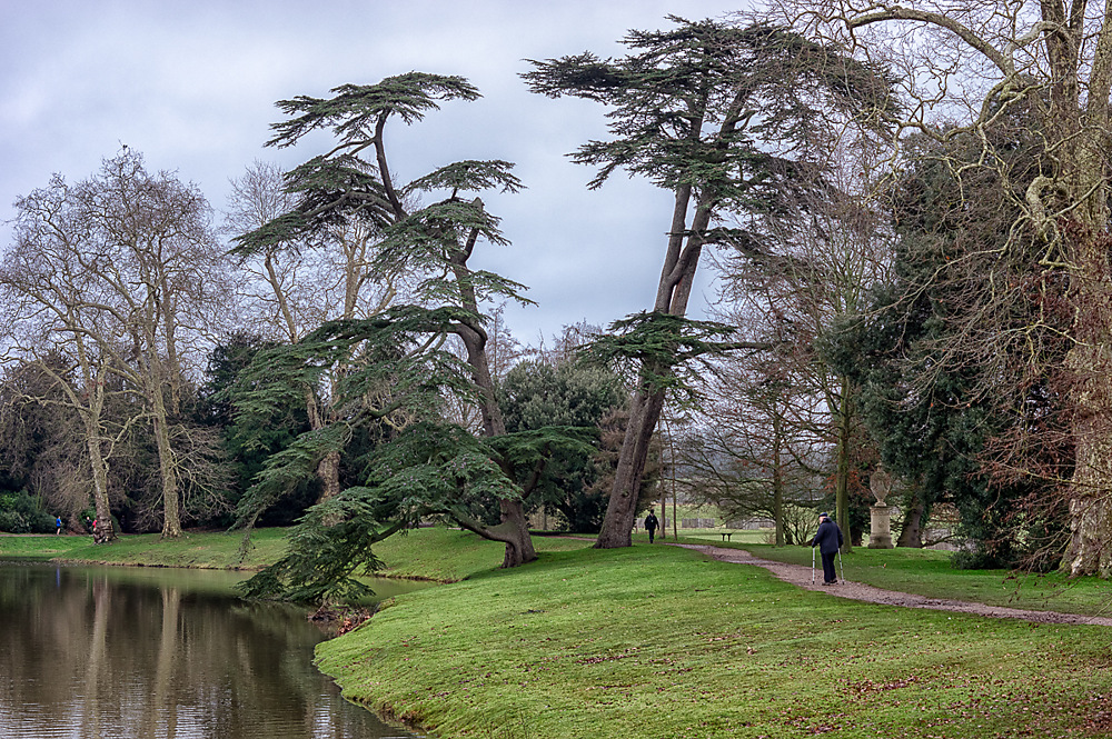 photoblog image Croome in Winter 6