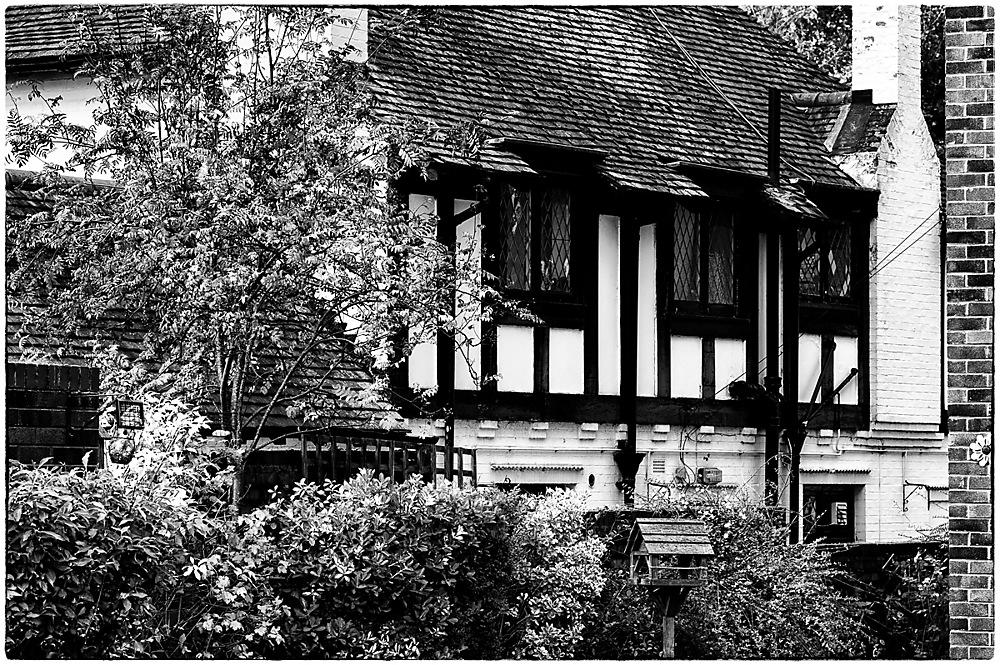 photoblog image Black and White