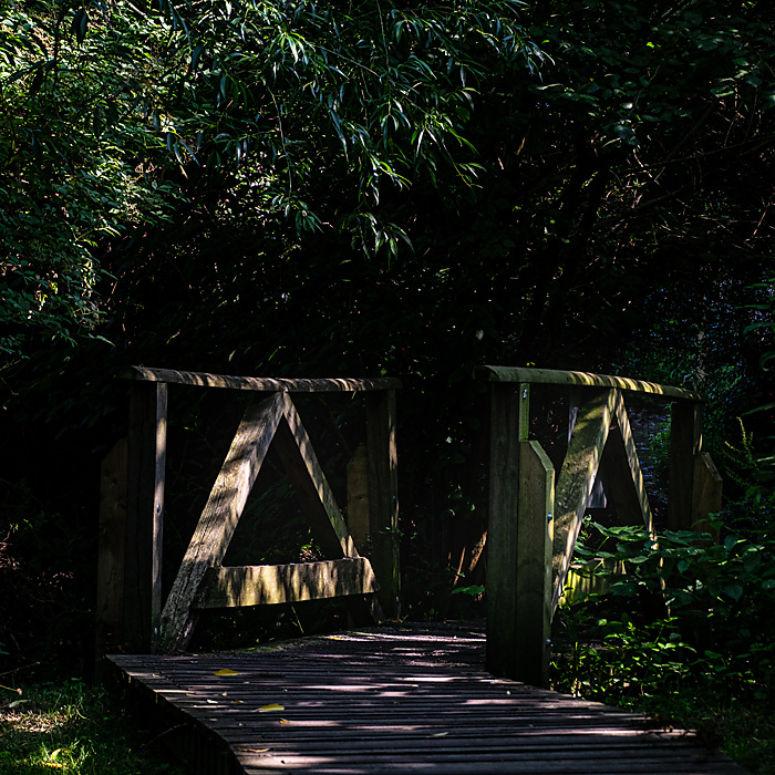 photoblog image A Bridge