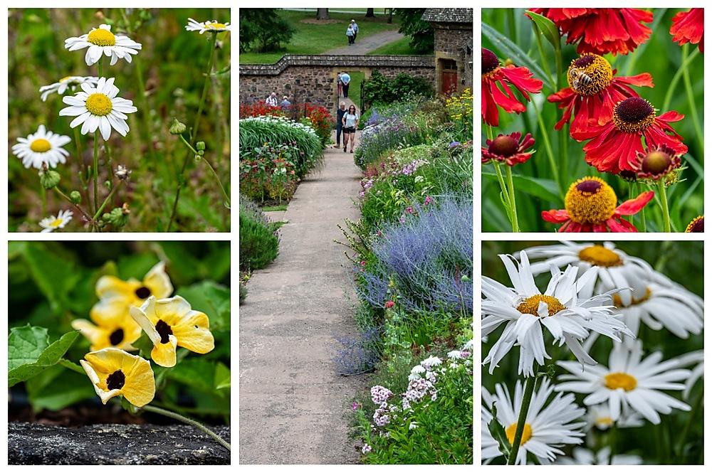 photoblog image Knightshayes garden 1