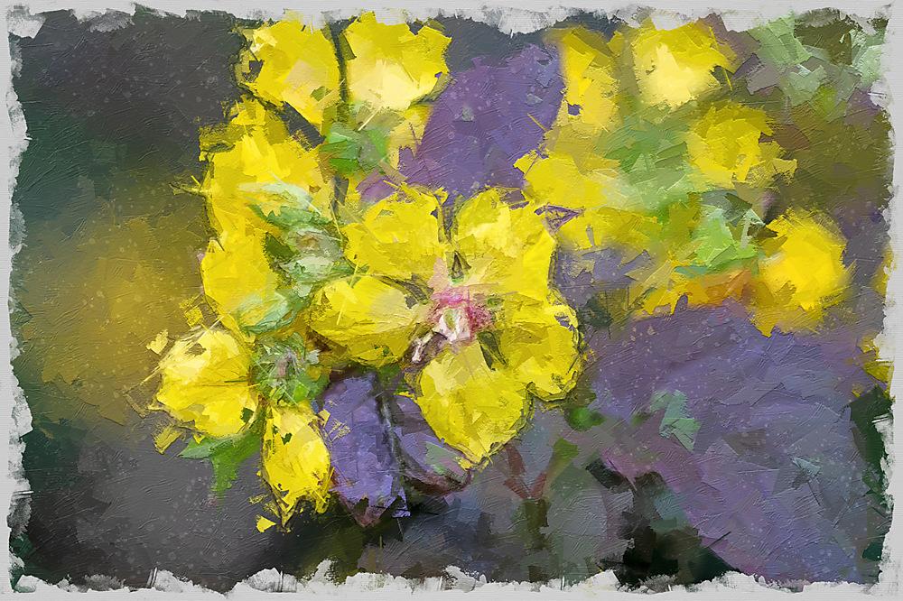 photoblog image Flower twiddle