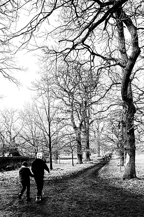 photoblog image Wintery walk